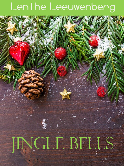 Boek: Jingle Bells - een romantisch kerstverhaal